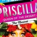 Priscilla Queen of the Deset - The Musical